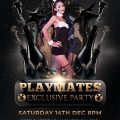 Butterflies Playmates Party 1 120x120 - Dollhouse Bangkok Photo Gallery 1