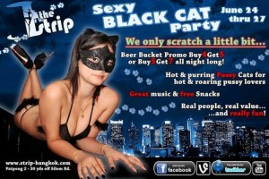 Sexy Black Cat Party The Strip 300x200 - Sexy-Black-Cat-Party-The-Strip